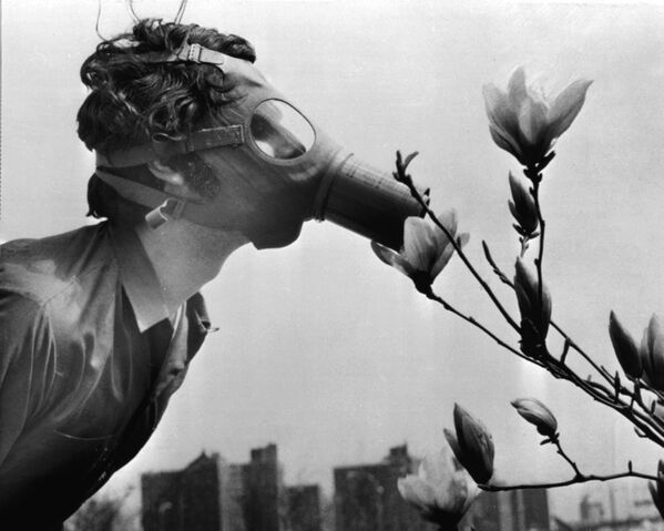 A Pace College student in a gas mask smells a magnolia blossom in City Hall Park on Earth Day, April 22, 1970, in New York.   - Sputnik International