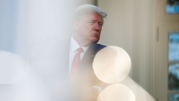 U.S. President Donald Trump speaks during the daily coronavirus response briefing in the Rose Garden at the White House in Washington, U.S., March 30, 2020 - Sputnik International