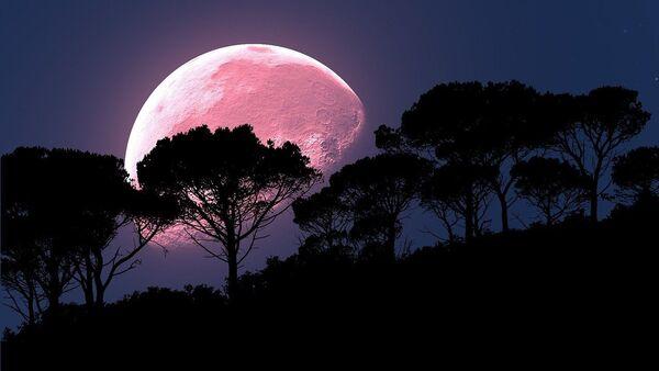 Pink moon  - Sputnik International