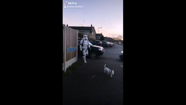 Dog Walked by Stormtrooper in UK  - Sputnik International