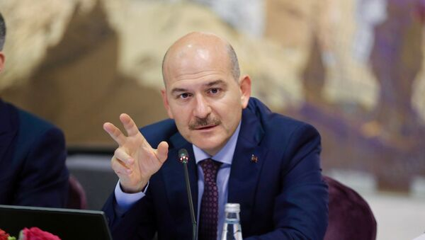 Turkish Interior Minister Suleyman Soylu speaks during a news conference for foreign media correspondents in Istanbul, Turkey, August 21, 2019 - Sputnik International