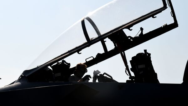 A 494th Aircraft Maintenance Unit crew chief sanitizes the cockpit of an F-15E Strike Eagle to prevent the spread of COVID-19 at Royal Air Force Lakenheath, England, April 16, 2020. - Sputnik International