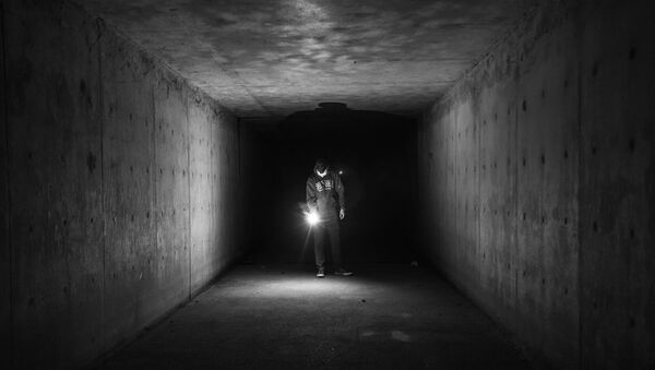 Dark tunnel - Sputnik International