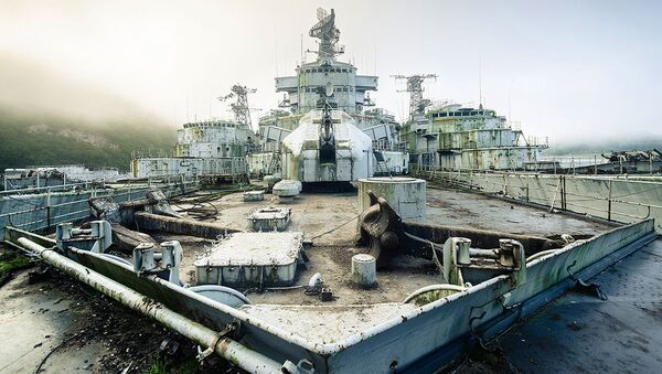 A cemetery of French warships discovered by photographer Bob Thissen - Sputnik International