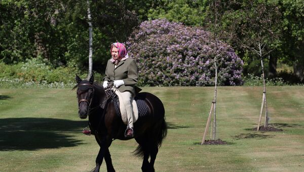 Britain's Queen Elizabeth II rides Balmoral Fern, a 14-year-old Fell pony, in Windsor Home Park, following the outbreak of the coronavirus disease (COVID-19), in Windsor, Britain, in this undated pool picture released on May 31, 2020. - Sputnik International