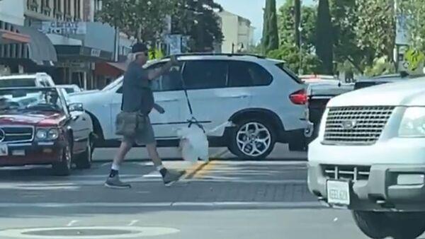 Man Walks Pet Goose on Leash Downtown  - Sputnik International