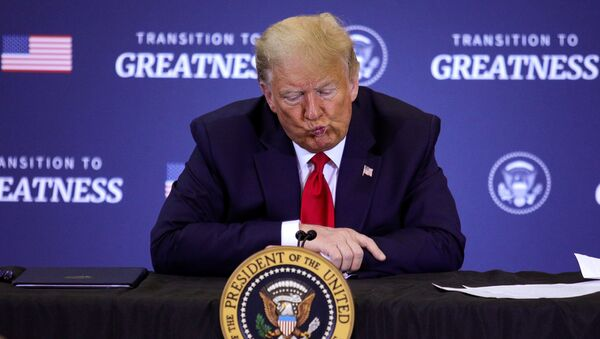 U.S. President Donald Trump participates in a roundtable discussion on commercial fishing in Bangor, Maine, U.S., June 5, 2020 - Sputnik International