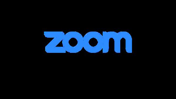 Zoom video conferencing  - Sputnik International