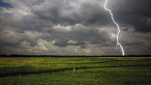 Nine cows killed by lightning strike in Ireland - Sputnik International