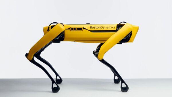 Man's Best Mechanical Friend: Robotic Dog Hits US Shelves - Sputnik International
