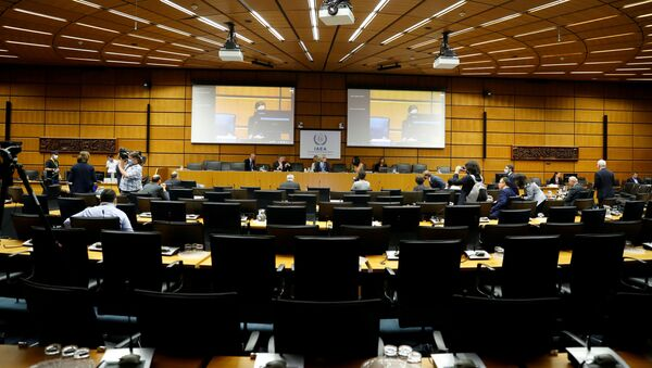International Atomic Energy Agency (IAEA) Director General Rafael Grossi awaits the start of an interactive board of governors meeting at IAEA headquarters in Vienna, Austria, June 15, 2020. - Sputnik International