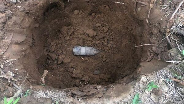A WWI-era 37 MKI projectile found by Kelly and Shannon Thomas near their house in Harford County, Maryland, United States, 16.06.2020. - Sputnik International