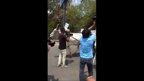 India protest - Sputnik International