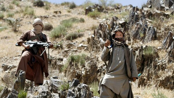 In this Friday, May 27, 2016 photo, Taliban fighters stand guard as senior leader of a breakaway faction of the Taliban Mullah Abdul Manan Niazi, not pictured, delivers a speech to his fighters, in Shindand district of Herat province, Afghanistan - Sputnik International