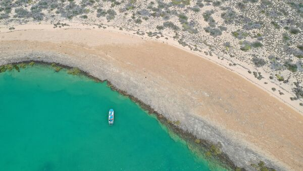 A general view of the area where researchers from Flinders University, University of Western Australia and James Cook University discovered underwater artefacts dated back thousands of years when the sea bed was dry land, in Australia, 2019 - Sputnik International