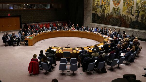 The United Nations Security Council meets about the situation in Syria at United Nations Headquarters in the Manhattan borough of New York City, New York, U.S., February 28, 2020 - Sputnik International