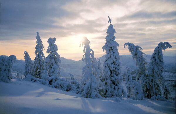 A winter landscape - Sputnik International