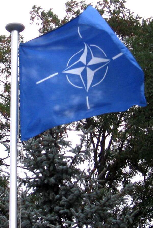 NATO offering carrot to ex-Soviet states - analyst - Sputnik International