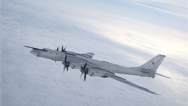 A Tupolev Tu-95 Bear strategic bomber - Sputnik International