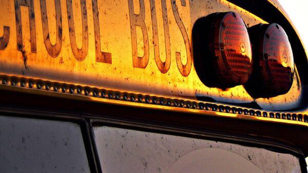 School bus - Sputnik International