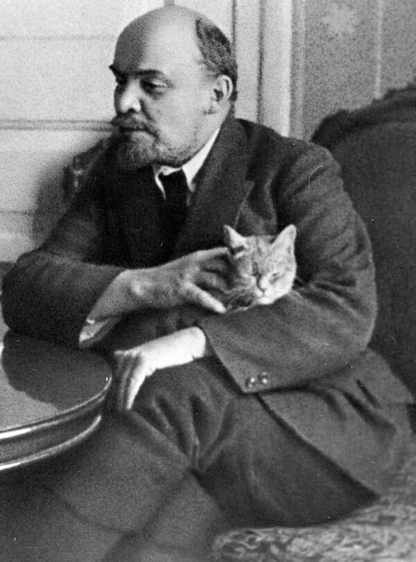 Cats and their famous owners - Sputnik International
