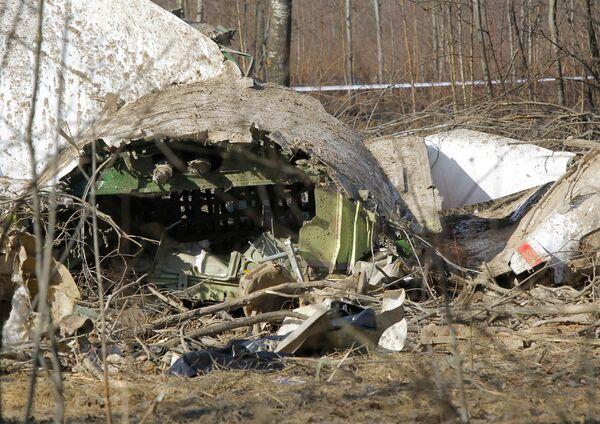 Crashed Polish plane landed without permission - air traffic controller - Sputnik International