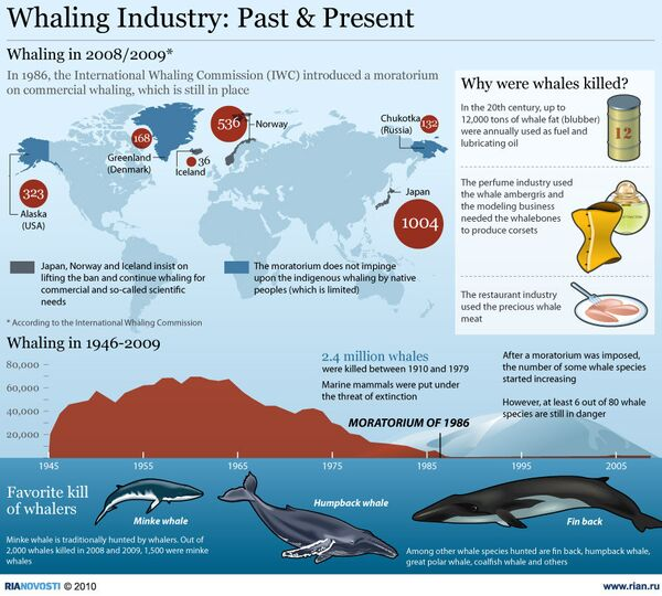 Whaling Industry - Sputnik International