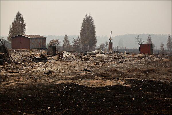 Medvedev calls for land allowance for wild fire victims  - Sputnik International