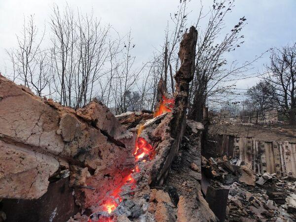 Consequences of wildfires in Russia's Volgograd Region - Sputnik International