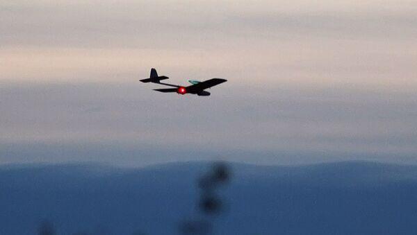 Russian servicemen 'mastering' use of Israeli drones - Sputnik International