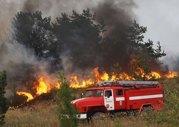 Forest and peat bog fires raged in European Russia in July-August. - Sputnik International