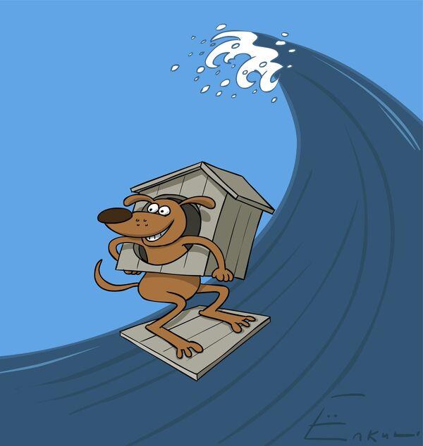 Surf dog contest - Sputnik International