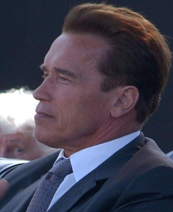 Schwarzenegger brings Californian investors to Russia - Sputnik International