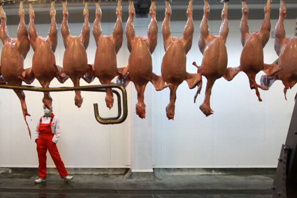 Russia can do without poultry imports in 2011 - Sputnik International