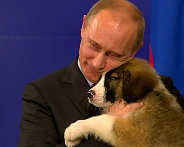 Bulgarian PM gives Putin puppy after sealing gas deal - Sputnik International