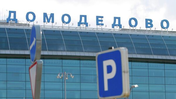 Moscow's Domodedovo airport - Sputnik International
