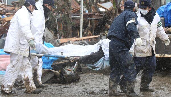 Consequences of the Japanese quake - Sputnik International