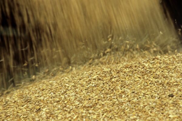 Russia to Harvest 90m Tons of Grain in 2012 - Ag Minister     - Sputnik International