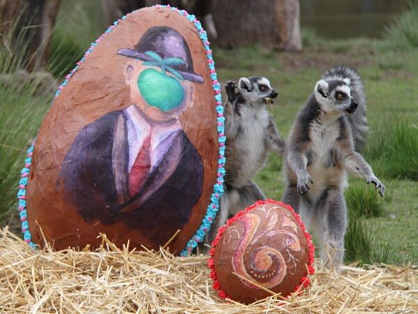 Easter presents for animals at Buenos Aires Zoo  - Sputnik International