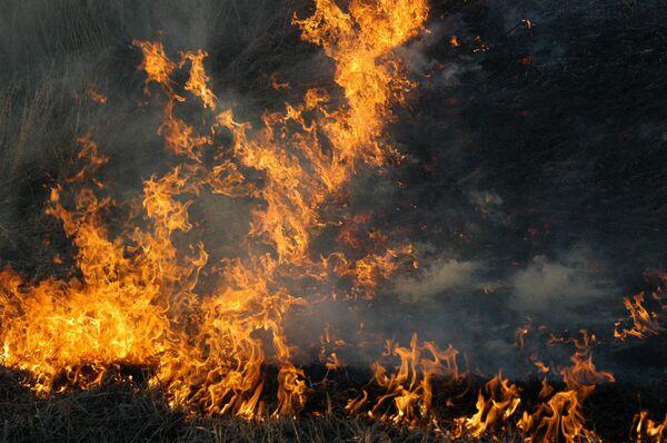 Seventeen people die in New Year fires across Russia - Sputnik International
