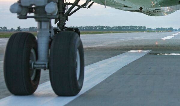 Passengers of bird-hit plane flown to destination point - Sputnik International