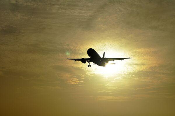 Small Russian airlines face mass cull - Sputnik International