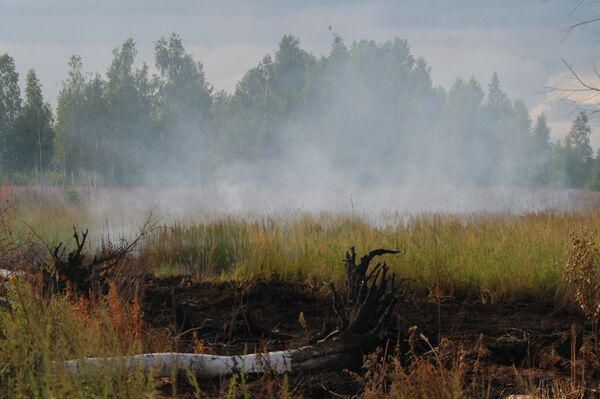 The Russian Ministry of Emergency Situations has discovered a large peat fire spread over 20 hectares in the Bryansk Region - Sputnik International