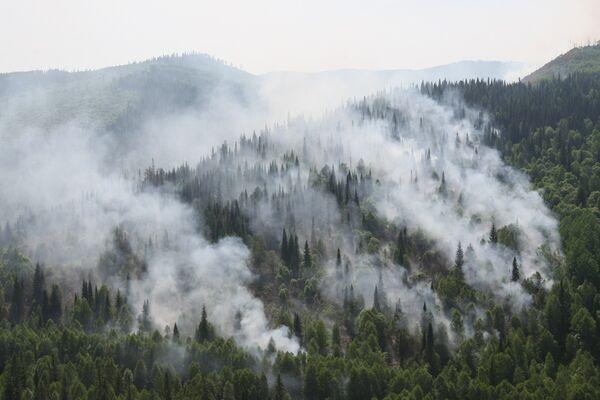 Firefighters battle 11 wildfires in Russia's Far East - Sputnik International