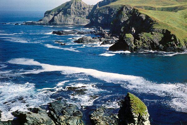 Commander Islands, the land of wind and fog - Sputnik International