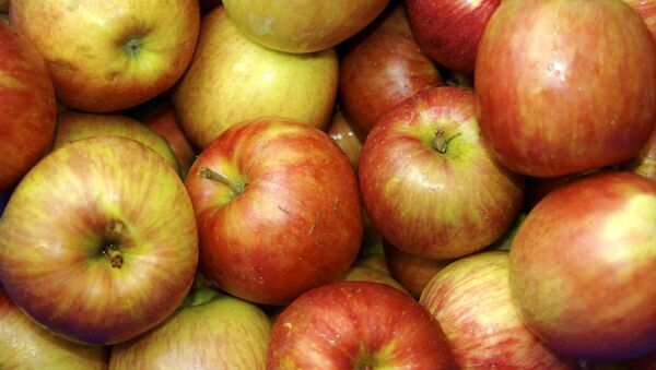 The United States is urging Polish agricultural authorities to speed up procedures, required for the import of fresh apples to America. - Sputnik International