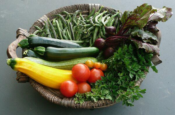 British Scientists Show Vegetables Can 'Talk' - Sputnik International