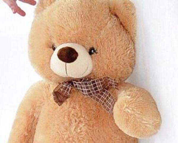 Almost four kilograms of the drug were discovered inside a teddy bear - Sputnik International