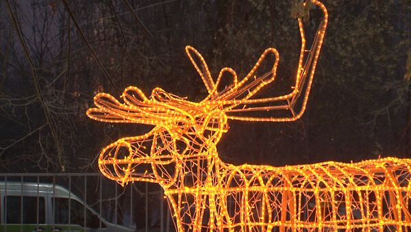 Christmas light show under way in Moscow park - Sputnik International