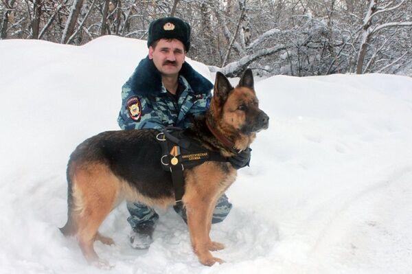 Russian Police Dog Gets Medal of Valor - Sputnik International